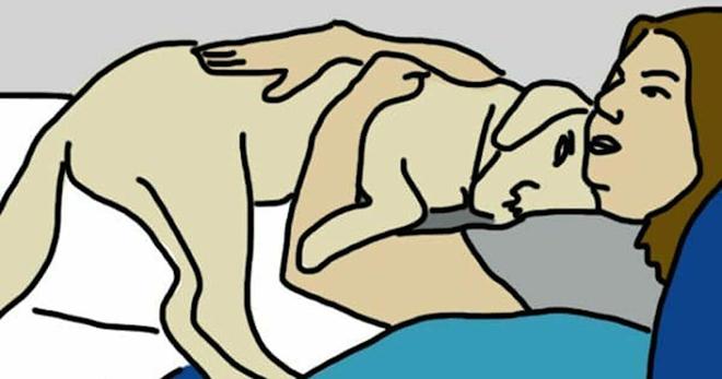 7 скрытых признаков того, что собака действительно любит вас!