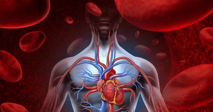 Чтобы проверить работу сердца, погрузите ладони в холодную воду на 30 секунд.