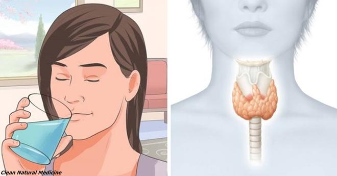 Это поможет перезапустить щитовидку, чтобы сжечь лишний жир и заметно ускорить метаболизм