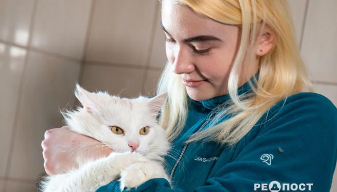 Профессиональный обниматель животных: в Украине появилась новая должность