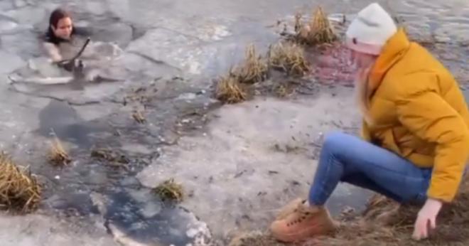 Мать троих детей прыгнула в ледяной пруд, чтобы спасти собаку в Мытищах