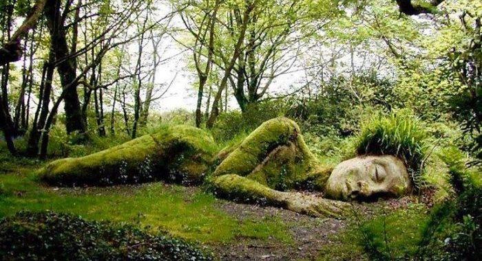 Фантастическая скульптура меняет вид в зависимости от сезона