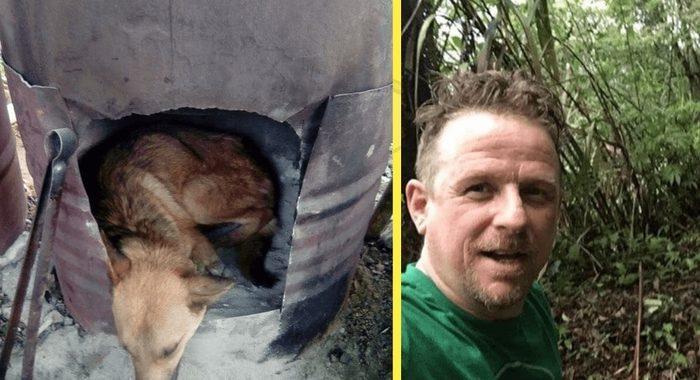 Парень отважился пойти в непроходимые горы, чтобы спасти раненого пса!